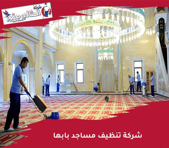 شركة تنظيف مساجد بابها